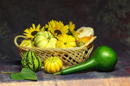 Herbst Stillleben / Verschiedene dekorative Kürbisse auf dem Tisch Lizenzfreie Bilder - 86671733