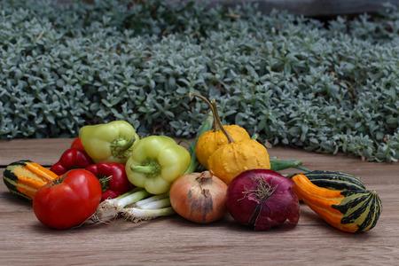Herbststilleben / Verschiedene Gemüse auf dem Tisch Standard-Bild - 86757827