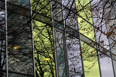 Reflexion in den Fenstern eines modernen Gebäudes Standard-Bild - 93127858