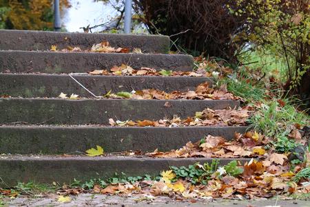 Herbstlaub , die auf Straße in den Schritten liegen Standard-Bild - 93127859