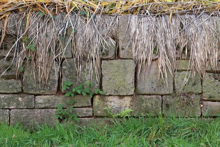 Background of a crumbling wall covered in moss and weeds Standard-Bild - 92928885