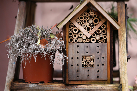 Homemade insect house  Self-made wooden house for insects