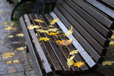 Autumn in the park leaves on a bench Standard-Bild