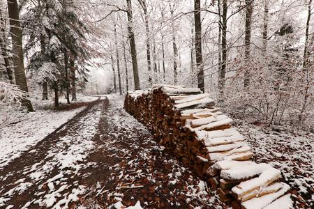 Winter Landscape  Firewood in the winter forest Standard-Bild