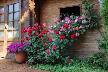 House with flowers Standard-Bild - 115687064