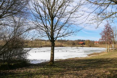 Frozen lake / Frosty morning