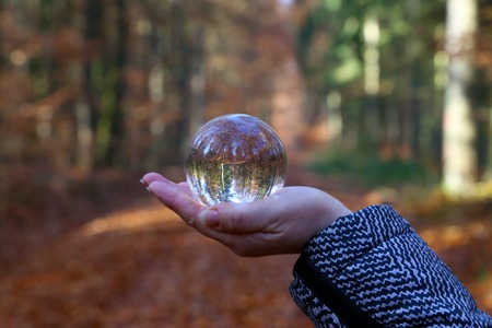 Autumn through a glass ball. Autumn compositions with glass bowl Standard-Bild - 114621100