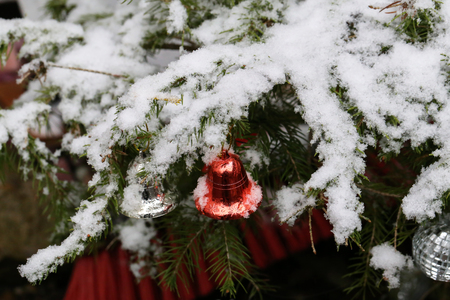 Compositions from a Christmas tree decoration in the winter forest. Standard-Bild - 114667082