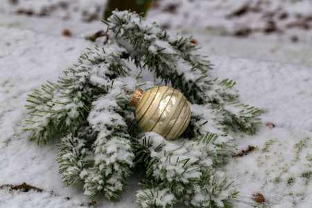 Compositions from a Christmas tree decoration in the winter forest. Standard-Bild - 114667221