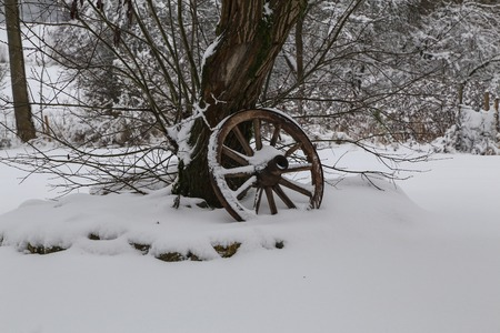 Old wooden cartwheel stands by the tree.