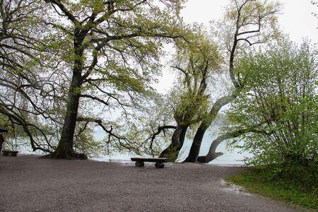 Bench on the shore of the lake Reklamní fotografie