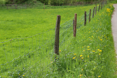 Electric fence in the field Stock Photo