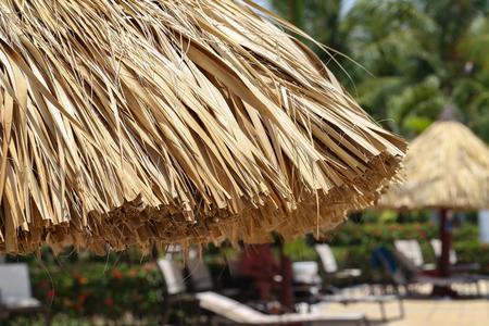Beach umbrellas made of palm leaves on seacoast