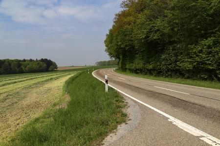 Frühlingslandschaft mit Asphaltstraße im Vordergrund. Standard-Bild