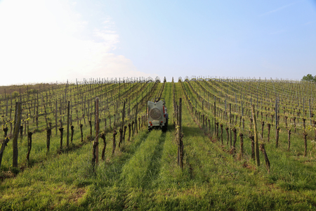 farmer watering the vineyards with a tractor.