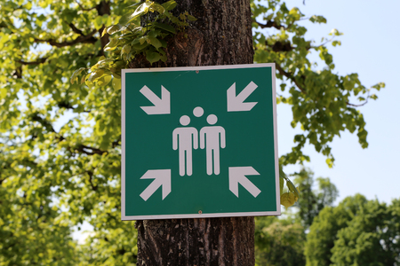 A green sign on the tree indicates the gathering place