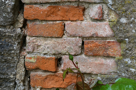 Fragment of a red brick house wall. Stockfoto - 123188837