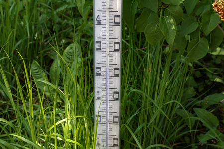 Large street thermometer stands in the garden.