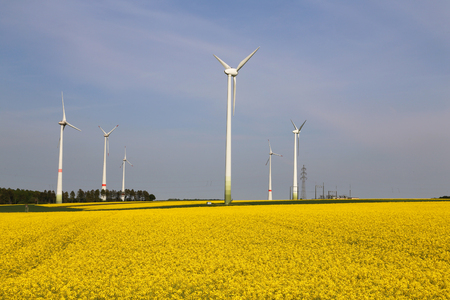 Wind engines in a rapeseed field in Germany. Banque d'images - 123867735