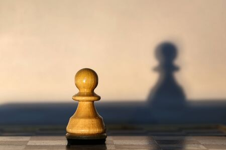 Chess piece - pawn and shadow from it.