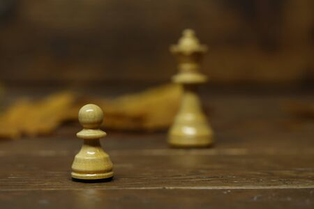 Chess pieces on a blurry brown background. Every pawn dreams of becoming a queen.