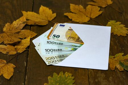 Cash copies of euros in an envelope are on the table