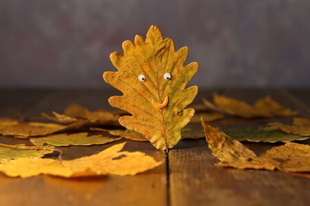 Yellow autumn oak leaf in the form of a face. Stock Photo