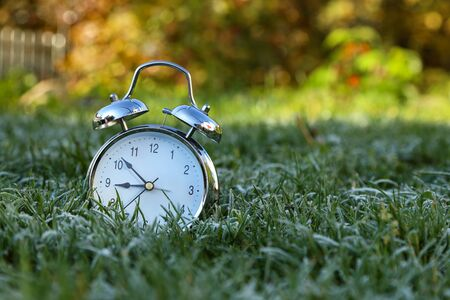 The alarm clock is in the grass covered with frost. Reklamní fotografie