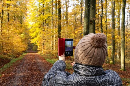 A woman takes pictures of a beautiful autumn forest.