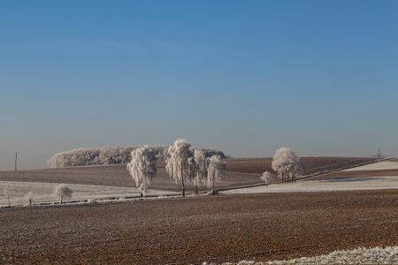 Frosty morning. Winter landscape with trees covered with hoarfrost. Фото со стока