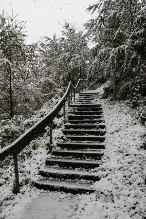 Staircase covered with white snow in the middle of the winter forest