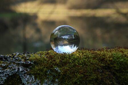 Forest Lake through a transparent glass ball