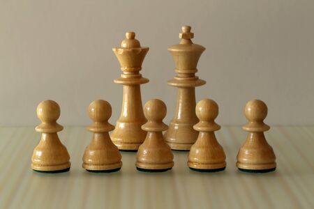 chess pieces on a blurry light background