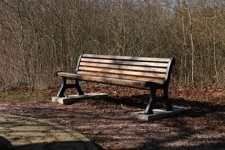 Bench in the park. Wooden bench for rest 写真素材