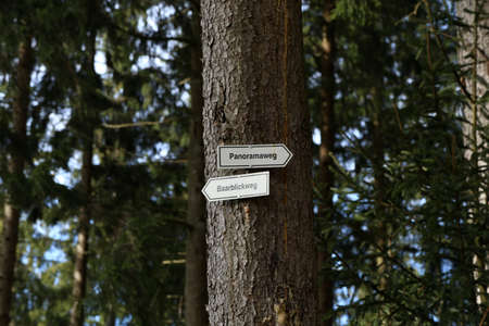 Hiking trails in the Black Forest, translation - Panoramaweg, Baarblickweg