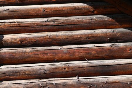 Sawn logs lie on the edge of the forest.