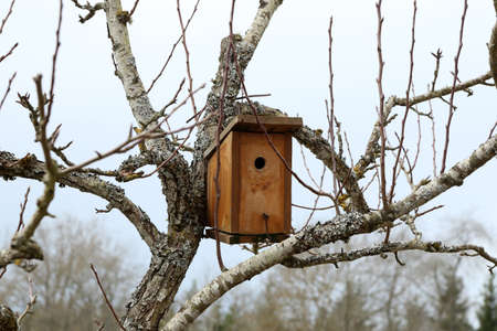 Bird house hanging from the tree with the entrance hole in the shape of a circle. Standard-Bild