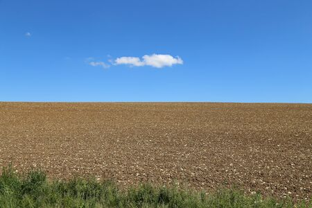 A ploughed rocky field and blue sky with a cloud