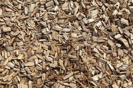 Abstract background with wood shavings and wood chips.