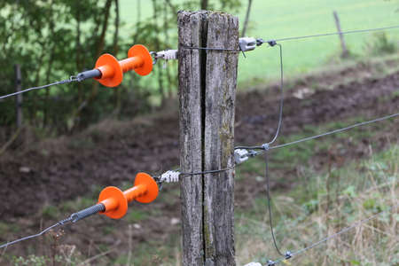 Electric fence gate protects a green grass pasture