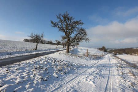 Winter landscape with snowy fields and blue sky