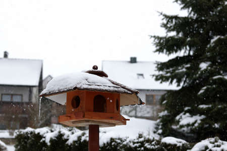 Bird houses and feeders in the park in winter