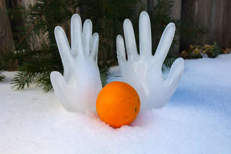 Orange on the snow on the background of ice hands
