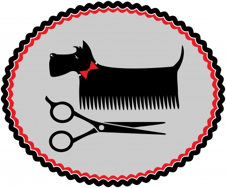 grooming scottish terrier with red bow and scissors