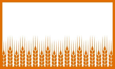 produits céréaliers: fond blanc avec des oreilles de blé abstraites et le lieu pour le texte