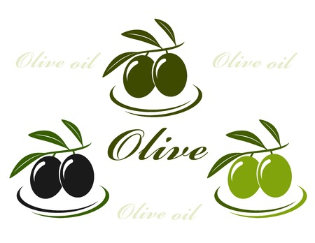 colorful isolated olive set on white background Vector