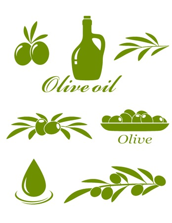set of green olive design elements on white background Vector