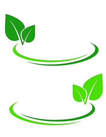 fond avec des feuilles vertes et des lignes décoratives Vecteurs