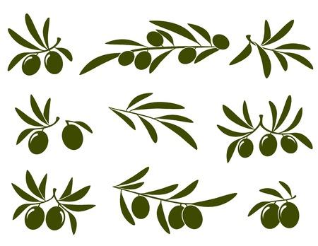 mediterranean diet: olive branch set on white background
