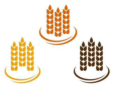 kernels: abstract wheat ears on white background with decorative line Illustration